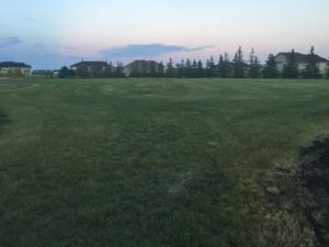 LAND in Elie,MB. Investment or Development Opportunity. Your New Business Location or Apply for Residential Subdivision!