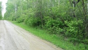 Build Your Cottage! LAND in Beaconia – 2 Acre Lot  – Close to Grand Beach/Grand Marais